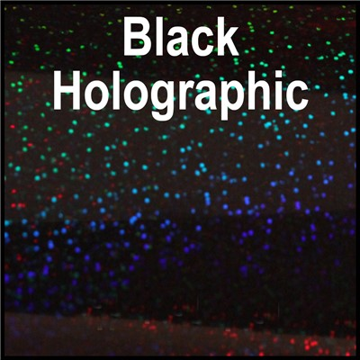 20in BLACK Holographic Heat Transfer